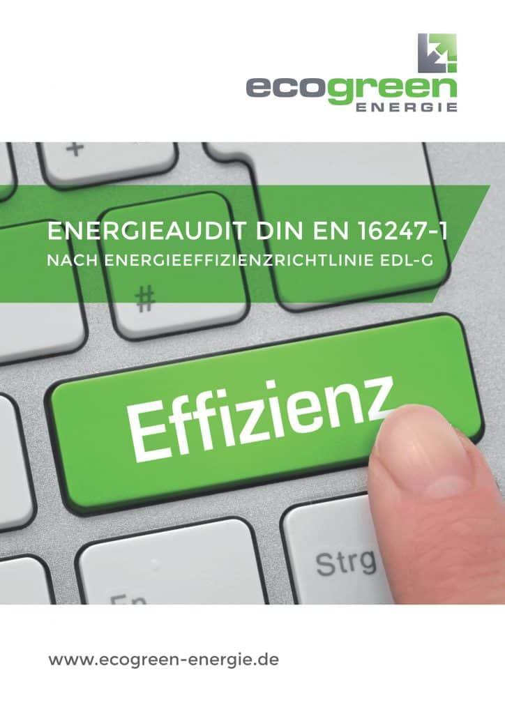 Flyer Energieaudit nach DIN EN 16247-1 nach EDL-G §8 Seite