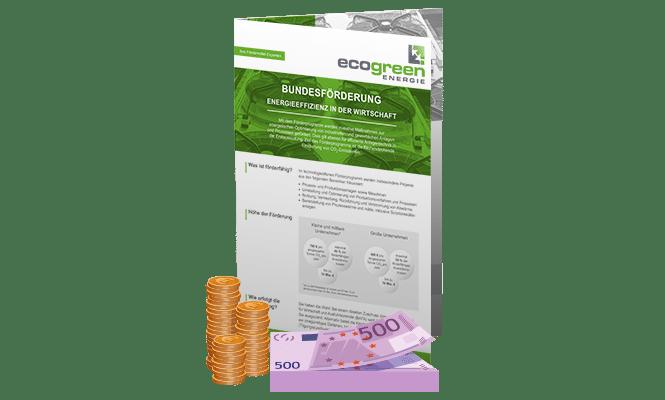 Bundesförderung Energieeffizienz in der Wirtschaft Absauganlagen